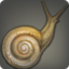 Allagan Snail Icon.png