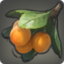 Loquat Icon.png
