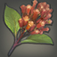 Amber Cloves Icon.png