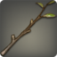 Beech Branch Icon.png