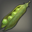 Broad Beans Icon.png