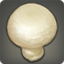Button Mushroom Icon.png