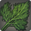 Fennel Icon.png