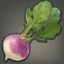 Garden Beet Icon.png
