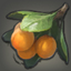 Harcot Icon.png