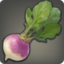Magma Beet Icon.png