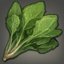 Mist Spinach Icon.png