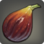 Old World Fig Icon.png