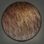 Ancient Animal Skin Icon.png